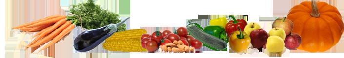 Sensory Nutrition